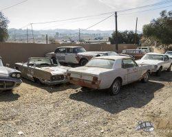 car-yard_0003