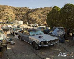 car-yard_0006