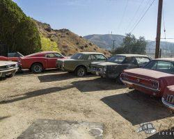 car-yard_0011