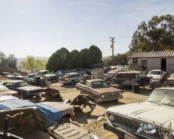 car-yard_0020