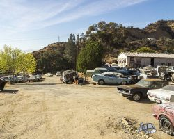 car-yard_0031