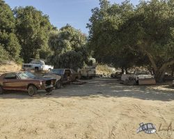 car-yard_0050