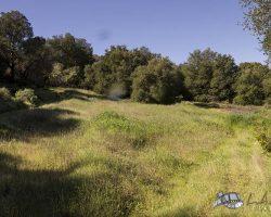 land-barn_0014
