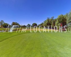 Golf_025
