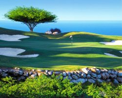 WW Golf Course_007