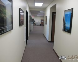 Offices (13)