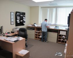 Offices (19)