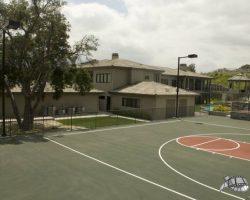 backyard_0010