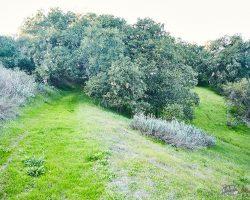 billkennedyphoto.com